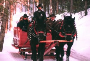 Breckenridge Dinner Sleigh Ride